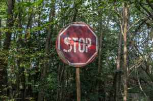 red and white stop road signage